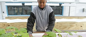 Choffin students learn from new aquaponics program