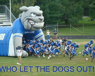 Who let the dogs out!!!!