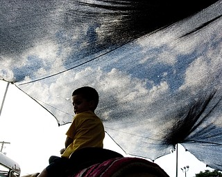 Zachary Nolker, 3, of MacDonald rides a pony under a translucent tent that allows the sky, on this sunny day, to appear on film at the Italian Festival at Mt. Carmel Church in Youngstown, OH. Thursday, July, 24, 2008. Daniel C. Britt.