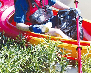 Mill Creek Park Board Commissioner Rick Shale picks litter from plants around shore of Lake Glacier in the park Thursday. WD LEWIS