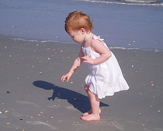 Sydney Henderson, 2, picks up shells at Hilton Head Island, S.C., last summer. Her parents are Todd and Jacey Henderson of Poland.