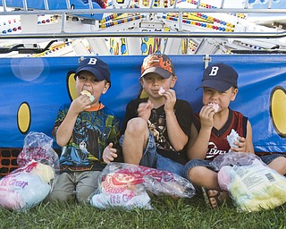 Sweet tooth: L-R Ethan Dunkel, 4, of Boardman; Adam Dewey, 6, of Canfield; and Eric Dunkel, 6, of Boardman, found a shady spot at the Canfield Fair to binge on cotton candy Saturday, August 30, 2008. Daniel C. Britt.