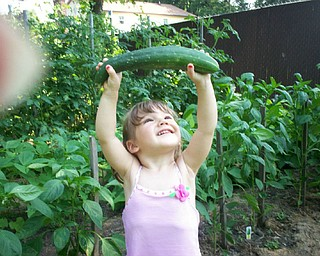 Robert and Stephanie Bishop of Poland sent a shot of their granddaughter, Alexis Antal, 2, of Poland. Every day she checks the growth of all the plants at their garden. Her favorites are her sugar snap peas and cherry tomatoes.