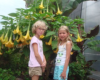 Emma Kadilac and Kristina Tudor admire a tropical plant on their trip to the LakeParks Farm in Cleveland. This field trip was sponsored by the Friends of Fellows Riverside Gardens. Photo by Roselyn Gadd, Veggie Photographer