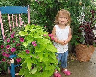 Hailey Skovran from Canfield was on a field trip to Lake Metroparks Farm in Kirtland,Ohio. The field trip was sponsored by the Veggie Garden program of Fellows Riverside Gardens. The photo was taken by Roselyn Gadd , Veggie Photographer.