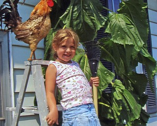 Zoe Kabetso, 6, delights in getting close to the giant sunflower at the home of Margie Kemble in Canfield. Zoe is the daughter of Gary and Jessica Kabetso, Jr.