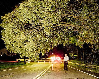 "Rick Plant stands under the storm damaged tree that has a 50 yard stretch of Churchill Street, near Belmont in Liberty, closed to traffic. A better road block is needed, Plant said. ""The cones take people by surprise."" Two different accidents have occurred during 12 hours the road block has been in place. ""It's not doing much for safety,"" Plant Said."