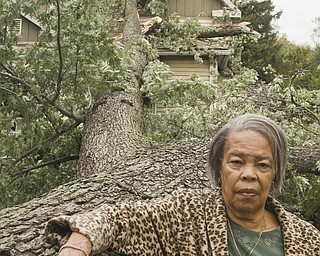 "Nancy Anthony was days away from moving into 1227 Main Street in Warren when last night's storm changed her mind. The giant maple in front of the house blew over onto it. ""It was in God's plan,"" she said."