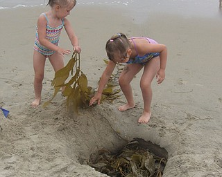 Julianna and Madison Hornikel, cleaning up San Clementa Beach, Ca... Granddaughters of Gary and Vera Orosz We live in Canfield, Ohio and spent a month in Dana Point, Ca. Our grandchildren live in Girard and also spent the vacation time with us.....