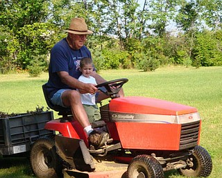 """Our summer fun, Andrew Morgan, 2, helping """"Papa"""" Jim Hickok of Canfield."""