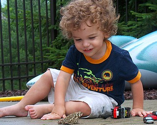 This is a picture of 2 year old Joey Wrenn of Poland playing with a new friend. Parents:  Joe and Debi Wrenn
