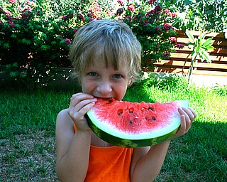 We took our 3 young children to Cyprus this summer to meet their cousins for the first time. As you can see, what they loved most was the Karpuzi (Watermelon)!  Lydia with Karpuzi    Jef Davis Poland