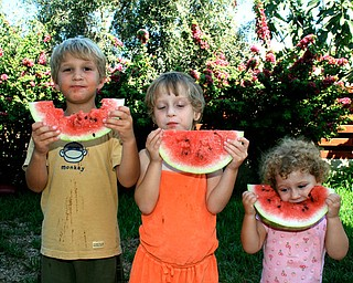 We took our 3 young children to Cyprus this summer to meet their cousins for the first time. As you can see, what they loved most was the Karpuzi (Watermelon)! Alonzo, Lydia, and Loukia with Karpuzi Jef Davis Poland, OH