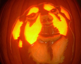 Mary Kish of Springfield Township carved a picture of her dog, Gordon, into this pumpkin.