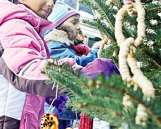 CLASS WORK: West Boulevard Elementary second-graders Ahmara Grace, 8, and Salina Jackson, 7, of Boardman decorate their class tree in Boardman Township Park for the 12th annual Boardman Community Christmas.