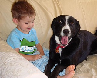 GRANDSON ANDREW MORAN 2 WITH TALLY, BORDER COLLIE MIX, ALSO 2.