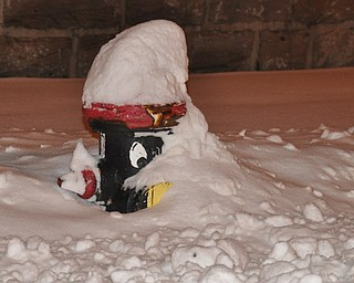 A Youngstown State University fire hydrant bearing the likeness of Pete the Penguin peeks outs through the snow.