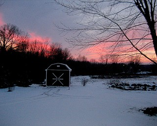 Who needs Florida? This backyard sunset on a cold day in Coitsville chased Pat Fitch's shivers away!