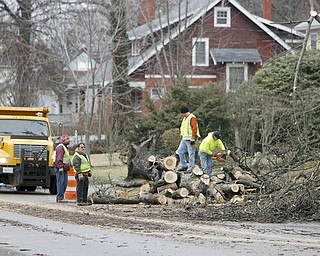 Mahoning  County Workers clear a tree that fell during heavy winds early thursday morning and took down wires and blocked Indianola in Boardman- crews were busy all night cleaning the roads and rehanging wires - robertkyosay