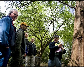 """5.10.2009 TREE LORE Richard """"Dick"""" Smith, right a volunteer at Fellows Riverside Gardens for some 20 years and a tour guide for four, tells participants in a guided tour about the Dawn Redwoods in the gardens. From left are Greg Repasky of New Springfield, Gary Evankovich of Boardman, Matt Zeller of West Middlesex, Pa., and Matt Repasky of Austintown. Smith said the tree is not a true redwood but may be an ancestor of California redwoods."""