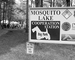 as Cooperation Station Dog Park at Mosquito Lake State Park - today the park had its grand opening  - owners and their dogs now have a fenced in area from the road to the lake . - robertkyosay