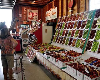 A display of apples at the fair.