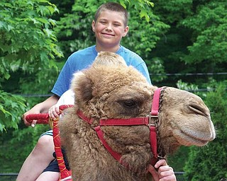 10-year-old AJ Iarussi of Struthers visited the Cleveland Zoo this summer and enjoyed a camel ride.
