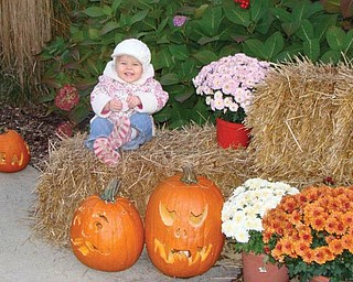 BREAK TIME: Taking a break recently at the Pumpkin Walk in the Flower Garden at Mill Creek Park is Mary Giovanna Melone, 19 months, of Boardman. Her parents are Michael and Kristy Melone.