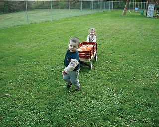 Zackery Hull, 3, and Megan Hull, 2, of Poland are using their wagon to harvest the pumpkins from their backyard garden.