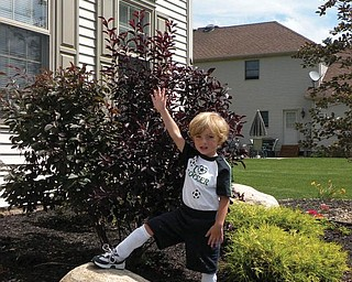 It was a big deal for 3-year-old Anthony Triveri of Poland when he scored his first soccer goal this summer.