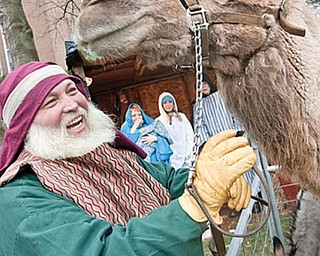 LIVING NATIVITY: An Arabian camel overlooks the live Nativity erected Wednesday at 1216 Fifth Ave., Youngstown, in front of Park Vista Retirement Community. The living Nativity will be open today from 3 to 6 p.m., weather permitting.