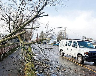 The Vindicator/Geoffrey HauschildA Motorist moves out of their lane to avoid hitting a tree that fell through a fence and onto a roadway at ?Calvary Cemetary? on Wednesday afternoon.