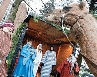 LIVING NATIVITY: An Arabian camel overlooks the live Nativity erected Wednesday at 1216 Fifth Ave., Youngstown, in front of Park Vista Retirement Community. From left to right are: Dwayne Felger of Greenford, who supplied the animals; Sue Strom, a clinical dietitian at Park Vista, portraying Mary; Cathi Cassudakis, a dietetic technician at Park Vista, an angel; the Rev. Alan Hutchinson, Park Vista chaplain, portraying Joseph; and Annmarie Pierce, Park Vista activities director, a wise man.