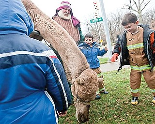 LIVING NATIVITY: Brothers, Gino, 5, left, and Rocco Pilolli, 6, of Youngstown stand with Dwayne Felger of Greenford, who supplied the animals; admiring the camel. The living Nativity will be open today from 3 to 6 p.m., weather permitting.