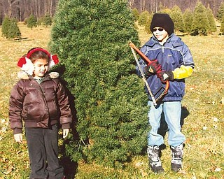 Lindsay, 6, and Robert, 10, Zublena of Canfield have selected their favorite Christmas tree at Bailey's Tree Farm, which has been a family tradition for the past 8 years.