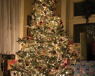 John and Laurie LaPlante of Poland enjoyed this beautiful Christmas tree this year.