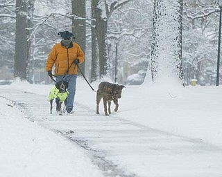 Terry Orechoneg and her dogs Cooper and Jago brave the elements as they walk through Wick Park in Youngstown Friday morning.
