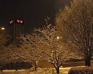 Youngstown State University campus, Thursday, January 7, 2009.