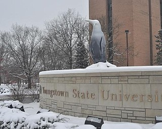 Youngstown State University campus, Friday, January 8, 2009.