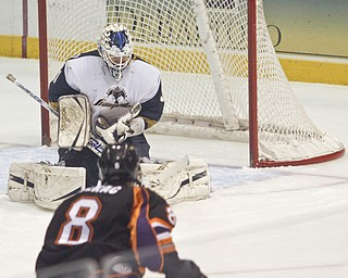 Phantoms Jiri Sekac (8) watches Sioux Falls Stampede goalie Clay Witt (31) stop the puck during the first period at Covelli Centre, Friday January 29, 2010.