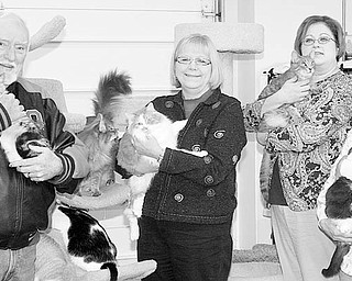 The Vindicator/Nick Mays CUDDLING: Proceeds from a Night at the Races being sponsored by the Second Chance Animal Rescue on Feb. 6 at the Saxon Club, in Austintown, will directly benefit rescued animals. A few of the cats the shelter is making available for adoption are cuddled by volunteers, from left, Roy Reese, Debbie Morgan, Colleen Young-Village, and Helen Dolak, who are assisting with the fundraiser.
