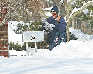 ON THE ROUTE:  Anna Marie Glover, a 24-year veteran of the U.S. Postal Service, delivers mail along Lakeshore Boulevard in Boardman.  She said Monday that deep snow makes her job challenging.