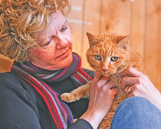 Jenny Pike, president of the Humane Society of Columbiana County, is launching a task force to find better ways to deal with pet neglect and abuse. Here she holds Tommy, a cat the society has rescued.