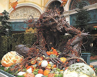 Elli Rinko of Canfield sent us this picture of the Bellagio in the fall of 2009..