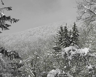 Hacker Valley, West Virginia, taken by Ellen W. Conrad of Salem..