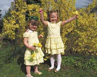 Dressed in their yellow Easter dresses, Natalie and Bridget, daughters of Nick and Patty DiVencenzo of Struthers, were a perfect match to the springtime blossoms of forsythia, daffodils and tulips. They posed for this picture following an Easter egg hunt at the home of their cousins, Mike and Laurie Fox of Lowellville..
