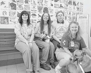 LISA-ANN ISHIHARA | THE VINDICATOR: Helping to complete arrangements for the Gigantic Garage Sale to be sponsored by Angels for Animals are, seated from left, Dr. Cheryl Whitfield, veterinarian; Diane Less, Angels founder, holding Runto; and George Beaver, systems manager; and in front, Mary Ann Karas, office manager, with Sammy.