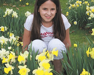 """Ally Coppola of Lowellville visited """"Daffodil Hill"""" in Mill Creek Park last month. The photo was taken by her aunt, Jodi Coppola."""