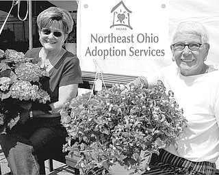 Delighted with the profusion of blossoms on plants they have assembled for the ongoing Northeast Ohio Adoption Services plant sale are from left, Janet Weller and Gere Weller, co-chairwomen for the fundraiser.
