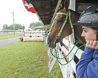 """Katier Chandler, 18, of Champion and her horse """"Roxie"""" stay dry while waiting to compete in a 4H event at the Trumbull County Fair Thursdazy. wdlewis"""